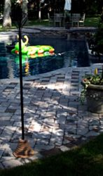Pool and pavers
