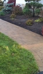 Simple paver walkway